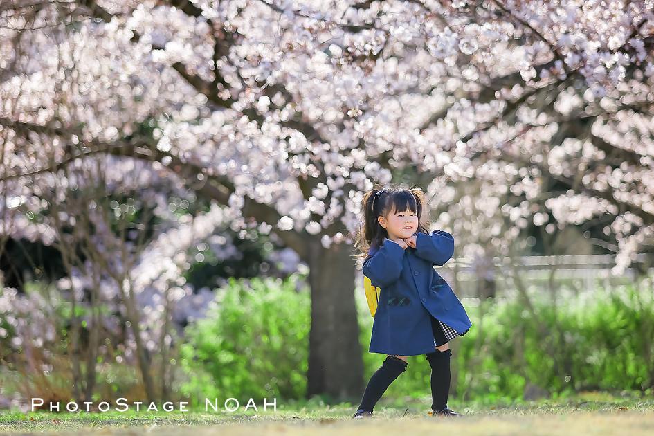桜の下での入園記念のお写真
