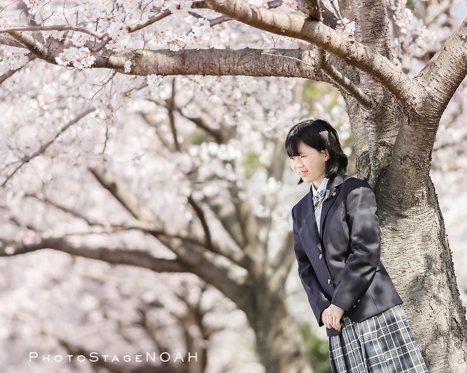 桜の下で入学写真