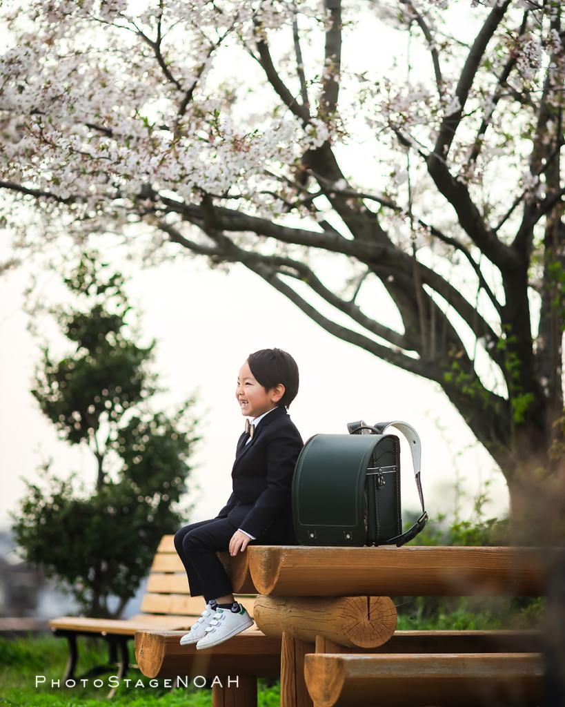 桜の下で入学記念写真